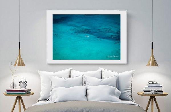 Ningaloo reef - Daniela Tommasi