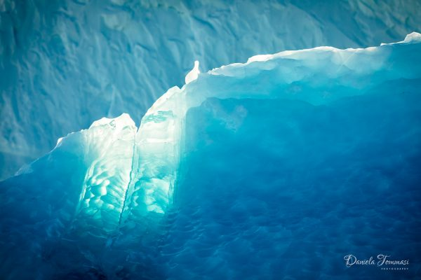 Greenland-Daniela Tommasi