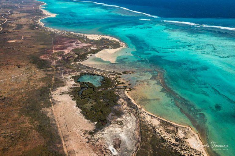 Ningaloo Reef - Daniela Tommasi Photography
