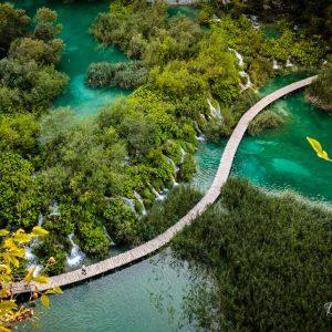 Water Wonderland