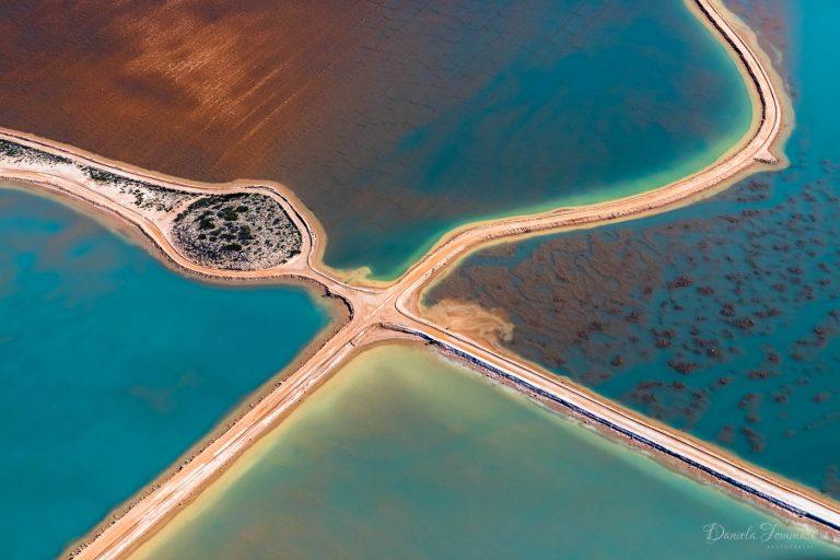 Shark Bay - Daniela Tommasi Photography