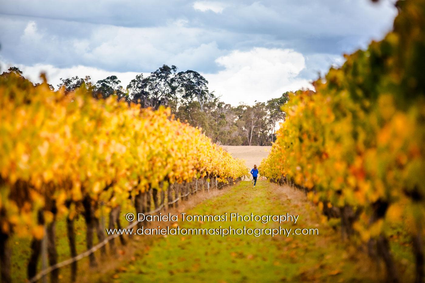 Winery-Daniela Tommasi Photography-12
