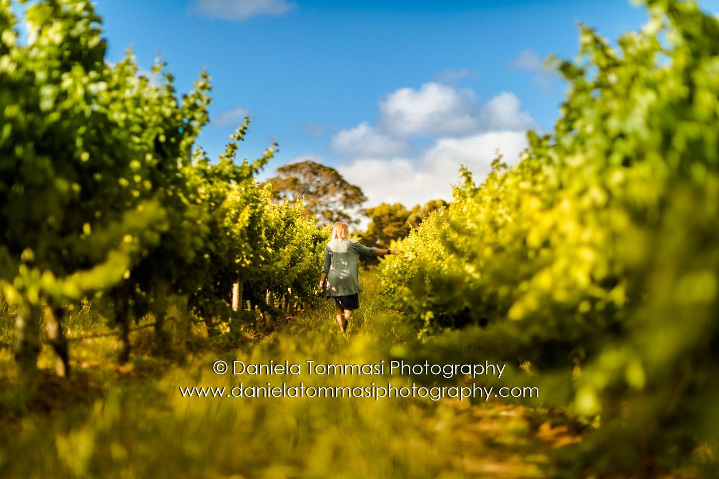 Winery-Daniela Tommasi Photography-5