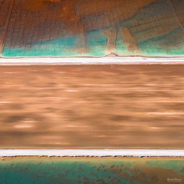 Scarf - - Daniela Tommasi Photography